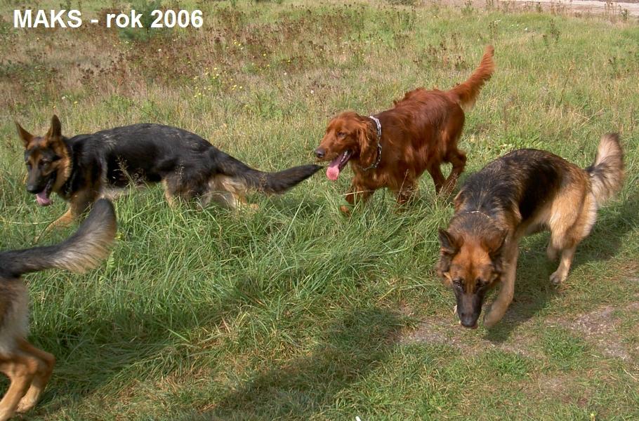 2006_09_30_02_Maks szkolenie.jpg