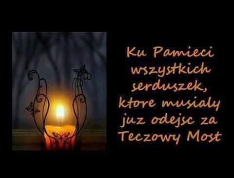 FB_IMG_1509514002084.jpg