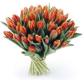 1289821479_tulipany_bukiet7_205.jpg.c4e19866903c1a0a638bef08c7cc5b67.jpg