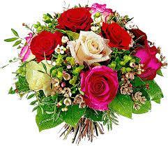 443397659_kwiatki5.jpg.91c08fbbd0d36e9ed4743853cddd3aef.jpg