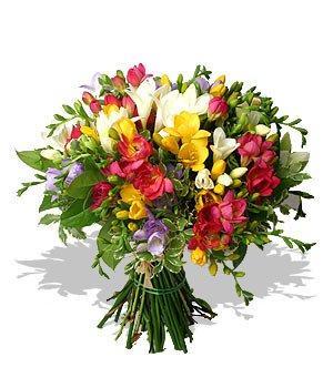 912362923_kwiatki4.jpg.ba518fb12f2b40afcb981023a2f8cdaf.jpg