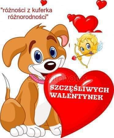 FB_IMG_1550134631475.jpg