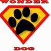 Wonder Dog - Trójmiasto - ostatnich postów przez Wonder Dog